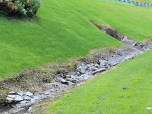 How to Protect Your Yard from Erosion